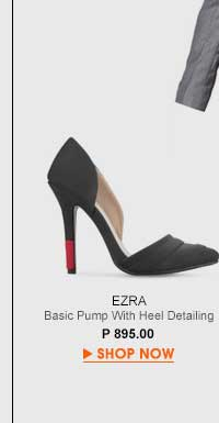 Basic Pumps