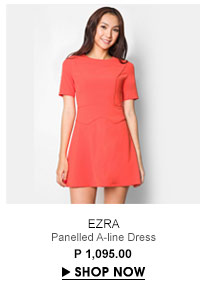 Panelled A-line Dress