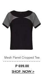 Mesh Panel Cropped Tee