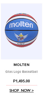 Gilas Logo Basketball