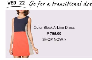 Color Block A-Line Dress