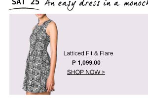 Latticed Fit & Flare