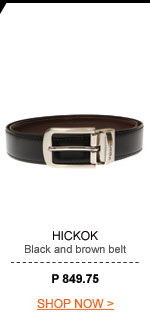 Mens Black & Brown Belt